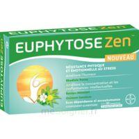 EuphytoseZen Comprimés B/30 à Saint-Brevin-les-Pins