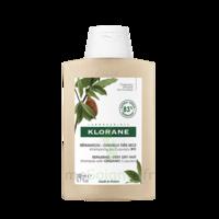 Klorane Beurre Cupuaçu Bio Shampoing Cheveux Très Secs 200ml à Saint-Brevin-les-Pins