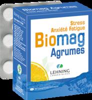 Lehning Biomag Comprimés à Croquer Agrumes B/90 à Saint-Brevin-les-Pins
