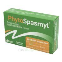 Phytospasmyl Caps B/60 à Saint-Brevin-les-Pins