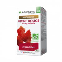Arkogélules Vigne Rouge Bio Gélules Fl/45 à Saint-Brevin-les-Pins