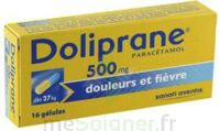 DOLIPRANE 500 mg Gélules B/16 à Saint-Brevin-les-Pins
