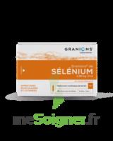 Granions De Selenium 0,96 Mg/2 Ml S Buv 30amp/2ml à Saint-Brevin-les-Pins