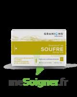 Granions De Soufre 19,5 Mg/2 Ml S Buv 30amp/2ml à Saint-Brevin-les-Pins