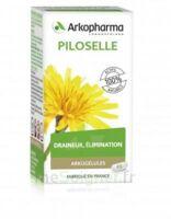 Arkogélules Piloselle Gélules Fl/45 à Saint-Brevin-les-Pins