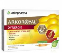 Arkoroyal Dynergie Ginseng Gelée royale Propolis Solution buvable 20 Ampoules/10ml à Saint-Brevin-les-Pins
