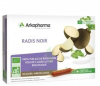 ARKOFLUIDE BIO ULTRAEXTRACT Radis noir Solution buvable 20 Ampoules/10ml à Saint-Brevin-les-Pins