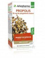 Arkogélules Propolis Bio Gélules Fl/45 à Saint-Brevin-les-Pins