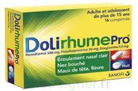 Dolirhumepro Cpr Plq/16 à Saint-Brevin-les-Pins