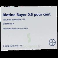 BIOTINE BAYER 0,5 POUR CENT, solution injectable I.M. à Saint-Brevin-les-Pins