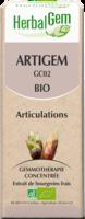Herbalgem Artigem Bio 30 Ml à Saint-Brevin-les-Pins