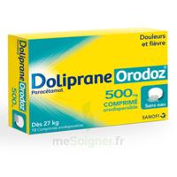 Dolipraneorodoz 500 Mg, Comprimé Orodispersible à Saint-Brevin-les-Pins