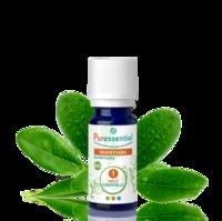 Puressentiel Huiles essentielles - HEBBD Ravintsara BIO* - 5 ml à Saint-Brevin-les-Pins