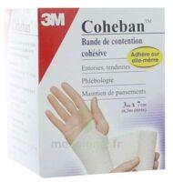 Coheban, Blanc 3 M X 7 Cm à Saint-Brevin-les-Pins