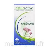 ELUSANES VALERIANE 200 mg, gélule Pilul/30 à Saint-Brevin-les-Pins