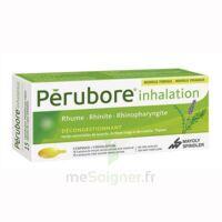 Perubore Caps Inhalation Par Vapeur Inhalation Plq/15 à Saint-Brevin-les-Pins