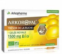 Arkoroyal Gelée royale bio 1500 mg Solution buvable 20 Ampoules/10ml à Saint-Brevin-les-Pins