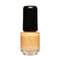 Vitry Vernis à Ongles Grège Mini Fl/4ml à Saint-Brevin-les-Pins