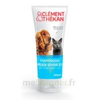 Clément Thékan Shampooing peaux sensibles T/200ml à Saint-Brevin-les-Pins