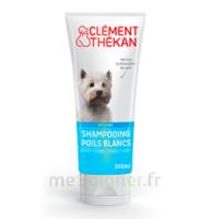Clément Thékan Shampooing poils blancs T/200ml à Saint-Brevin-les-Pins