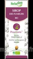 Herbalgem Sirop bio des fumeurs 150ml à Saint-Brevin-les-Pins