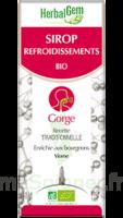 Herbalgem Sirop bio refroidissement 150ml à Saint-Brevin-les-Pins
