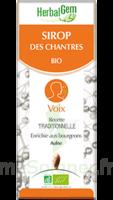 Herbalgem Sirop Bio Des Chantres 150ml à Saint-Brevin-les-Pins