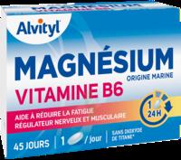 Govital Magnésium Vitamine B6 Comprimés B/45 à Saint-Brevin-les-Pins