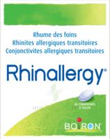 Boiron Rhinallergy Comprimés B/40 à Saint-Brevin-les-Pins