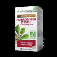 Arkogélules Marronnier D'inde Bio Gélules Fl/45 à Saint-Brevin-les-Pins