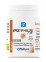 Nutergia Ergyphilus Gst Gélules B/60 à Saint-Brevin-les-Pins