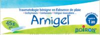 Boiron Arnigel Gel T/45g à Saint-Brevin-les-Pins